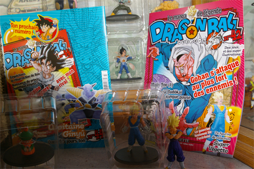 http://dragonballlf.free.fr/photos/IMGP4757.JPG
